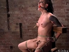 Shaved head have seats bears way-out bondage